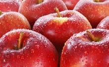 标准合约AP 苹果