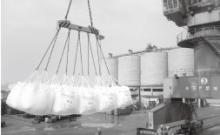 郑州商品交易所精对苯二甲酸(PTA)期权合约