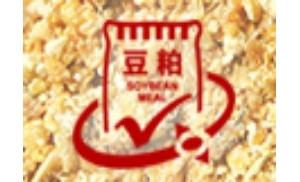 大连商品交易所豆粕期货期权合约